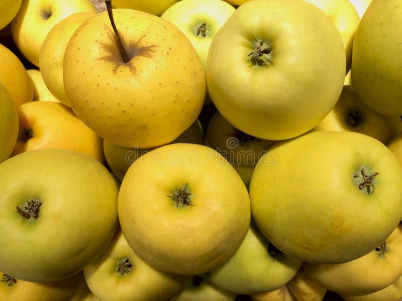 Molte mele gialle fresche sono su esposizione in un deposito fotografie stock