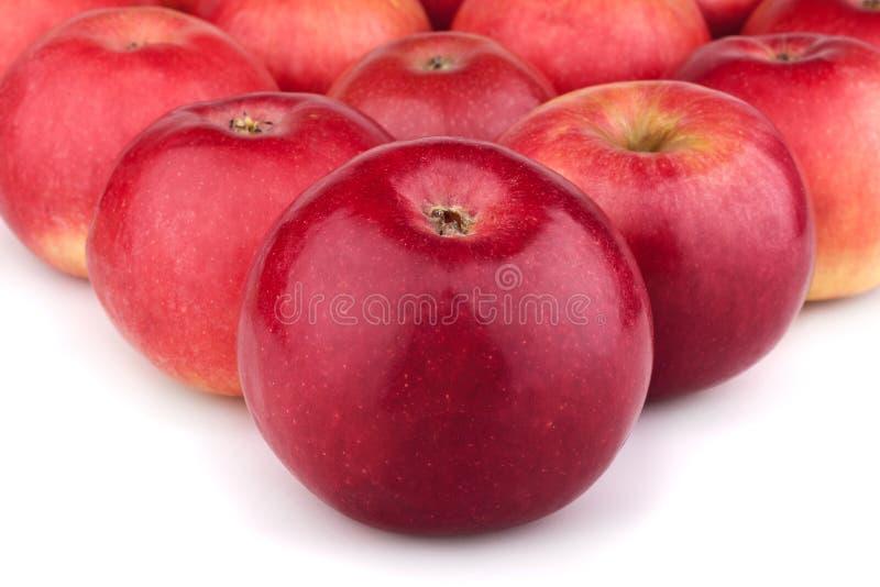 Molte mele succose rosse fotografia stock libera da diritti