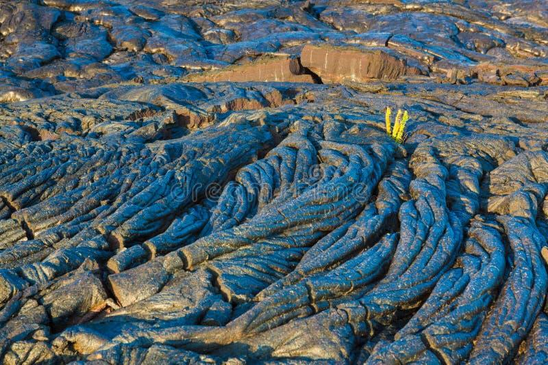 Molten cooled lava stock photo