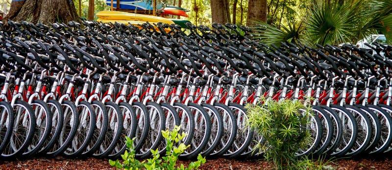 Molti affitti delle biciclette fotografia stock