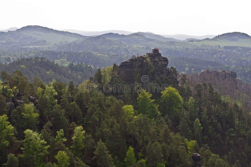 Molti alberi sulla cima della montagna fotografia stock