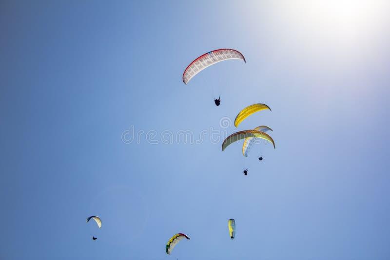 Molti alianti sui paracaduti variopinti in un chiaro cielo blu con sole luminoso fotografie stock libere da diritti