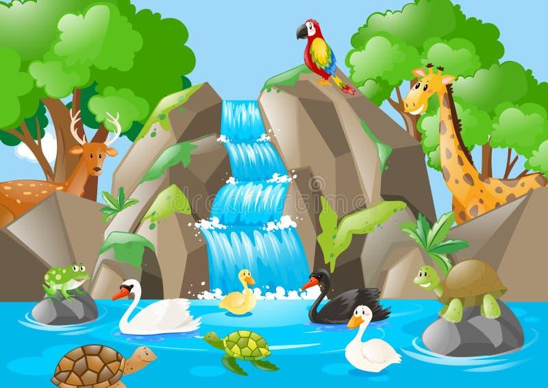 Molti animali nella cascata illustrazione vettoriale