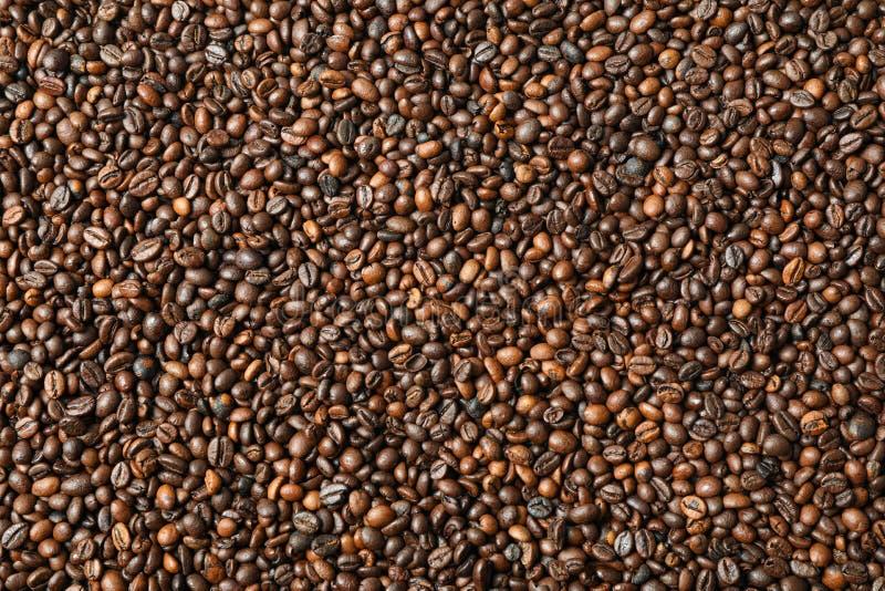 Molti chicchi di caffè come fondo, vista superiore immagine stock