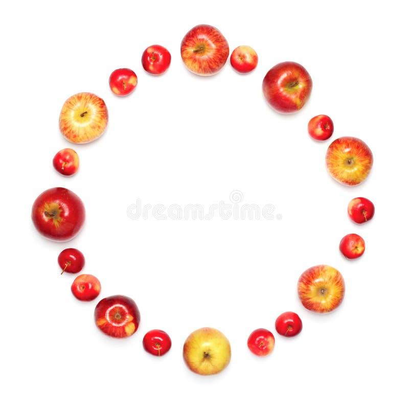 molti frutti differenti delle mele sotto forma del cerchio isolato fotografia stock libera da diritti
