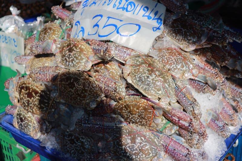 Molti granchi attendono le vendite al mercato fresco dei frutti di mare immagine stock