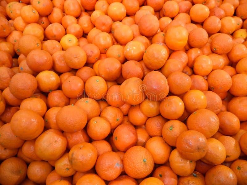 Molti mandarini freschi, maturi, succosi fotografia stock libera da diritti