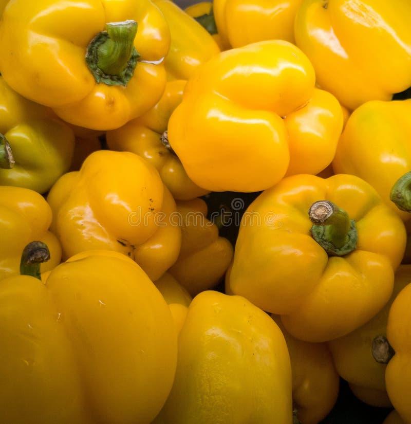 Molti peperoni dolci gialli impilano su fotografia stock