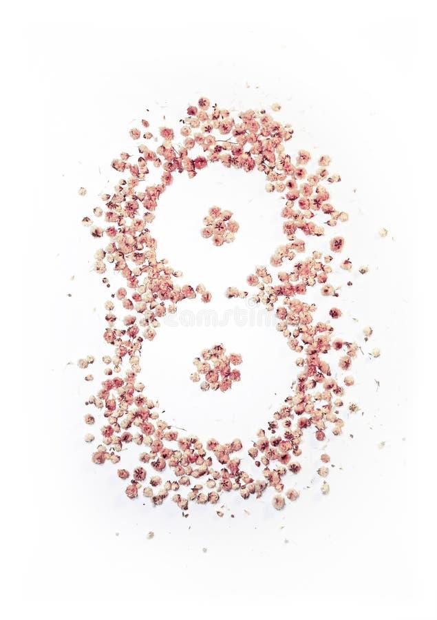 Molti piccoli fiori luminosi che formano un numero 8 fotografia stock
