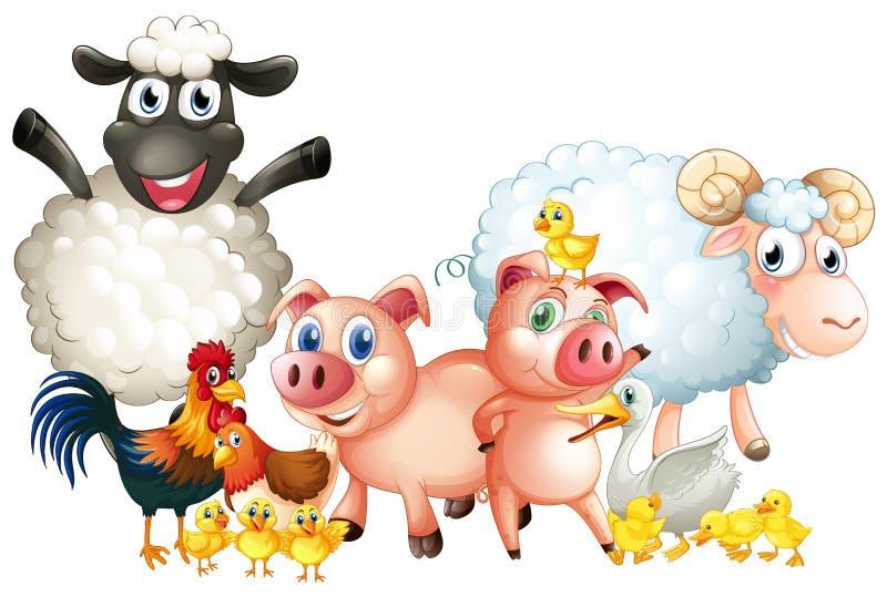 Molti tipi di animali da allevamento illustrazione vettoriale