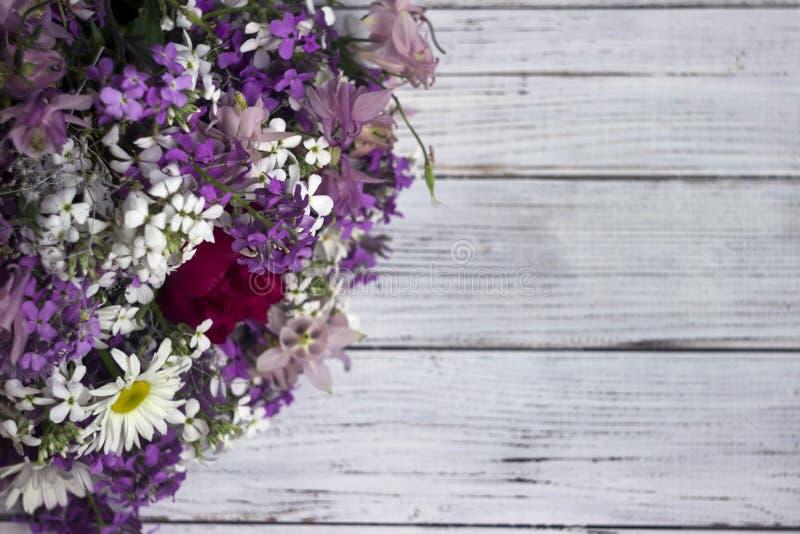 Molti tipi differenti di fiori: flox porpora e viola, margherita bianca, campane rosa immagini stock