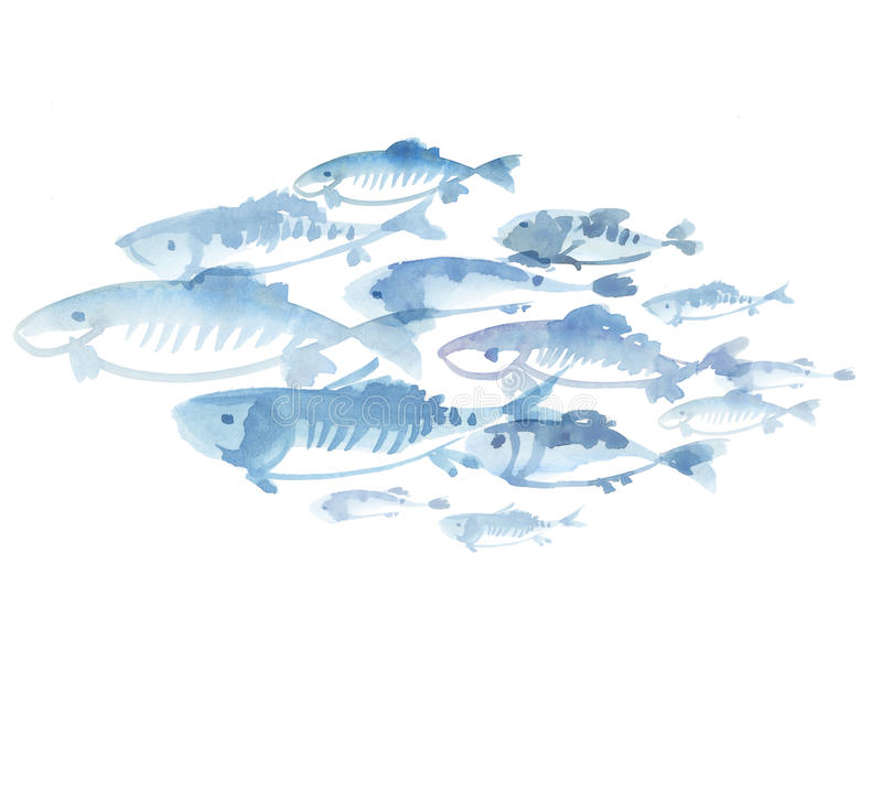 Moltitudine del pesce isolata su fondo bianco royalty illustrazione gratis