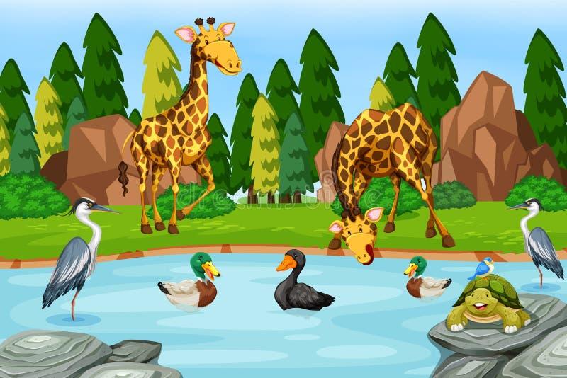 Molto animale accanto al fiume illustrazione vettoriale