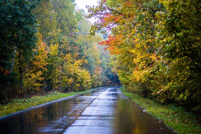 Molto bello autunno luminoso fotografia stock libera da diritti