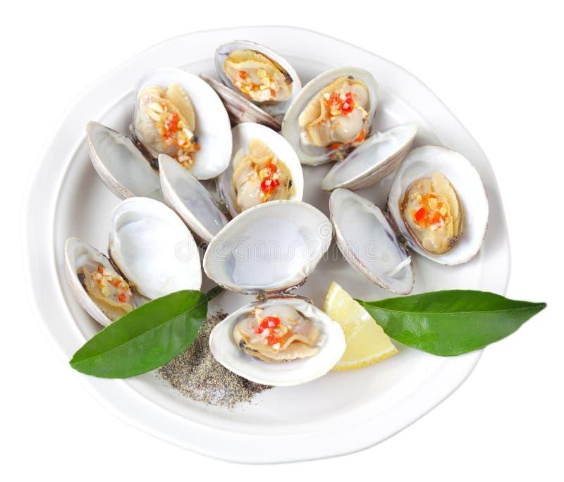 Moluscos cozinhados fotos de stock