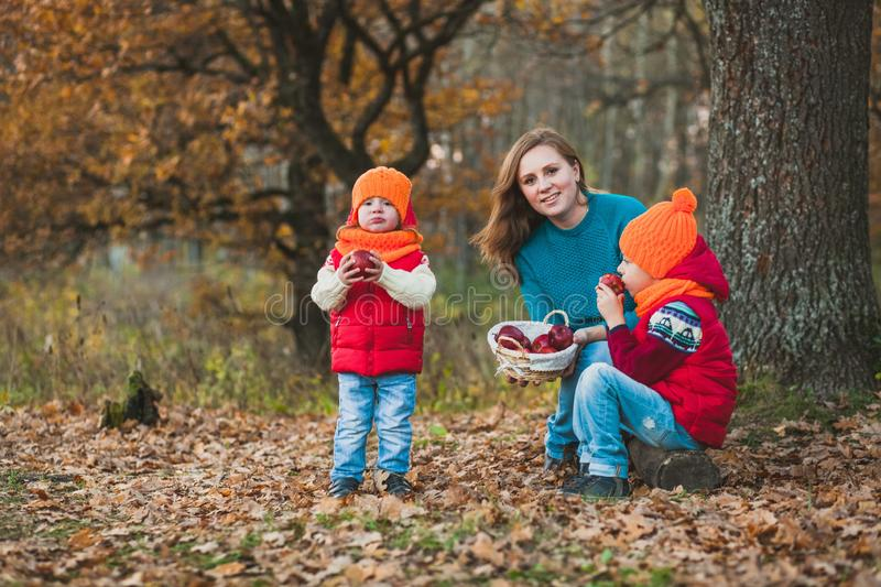 Mom with children in autumn park eat apples royalty free stock image