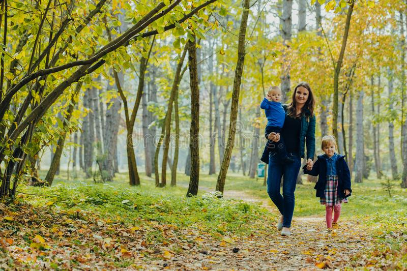 Mom with daughter and son are walking in the autumn park. Family for a walk in the forest stock images
