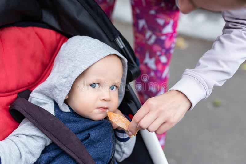 Mom feeding baby boy with bread crust outdoor. Child sitting in stroller during walk and tasting bread for first time. Lemon face. Expression. Funny eating kid stock photos