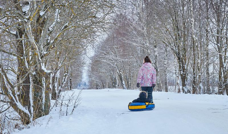 Mom rolls her little son on tubing in the Park in the winter. Happy family outdoors. winter fun for young children. Mom rolls her little son on tubing in the royalty free stock photography