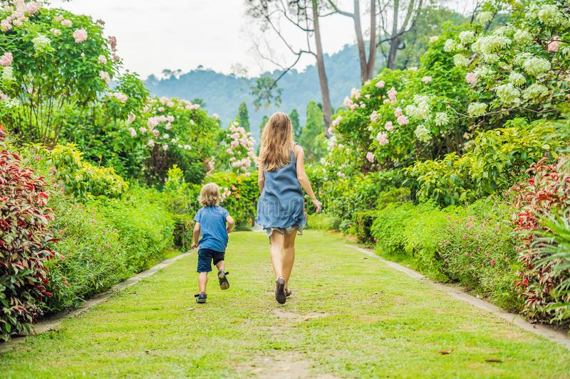 Mom and son are running around in the blooming garden. Happy family life style concept stock image
