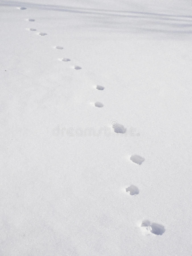 Moment i snö arkivbild