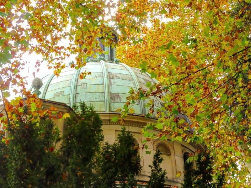 Momente des Herbstes stockfoto
