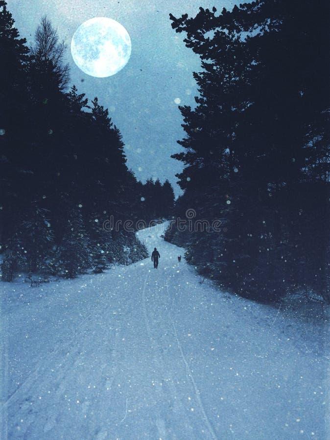 Momento azul do inverno fotografia de stock