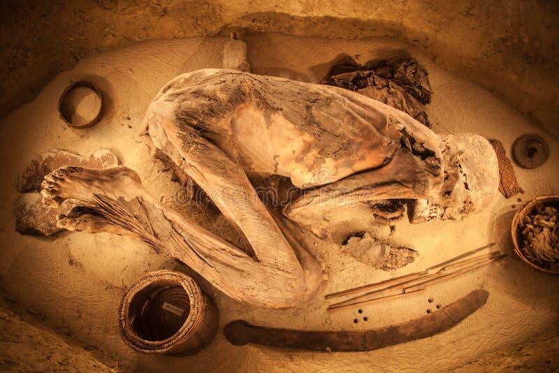 Momia egipcia ilustración del vector