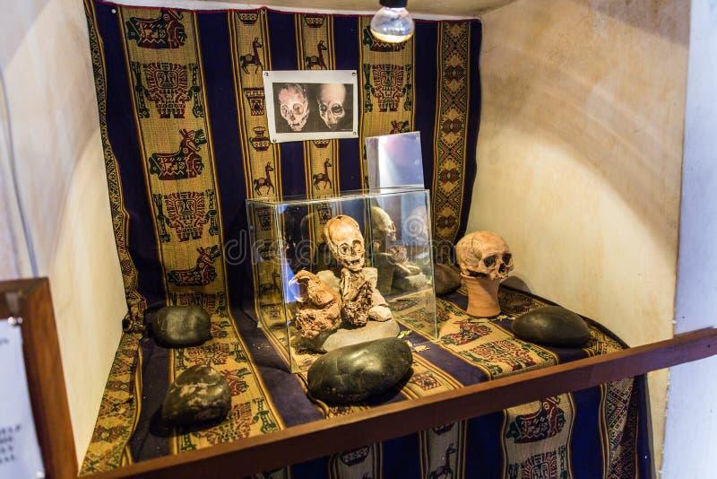Momia y cráneo embalsamados en Perú fotos de archivo libres de regalías