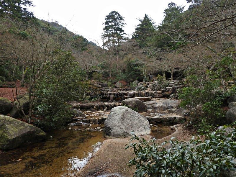Momijidani Park, Miyajima Island, Hiroshima, Japan royalty free stock photos