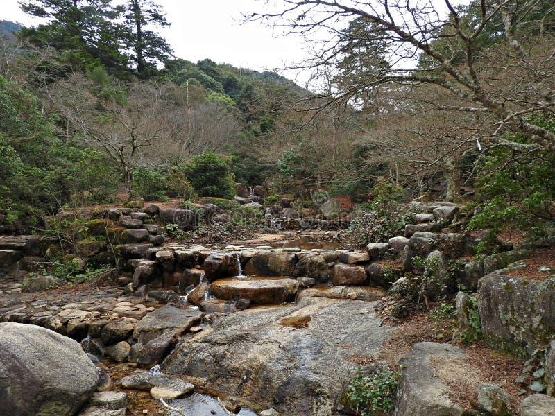 Momijidani Park, Miyajima Island, Hiroshima, Japan royalty free stock photography