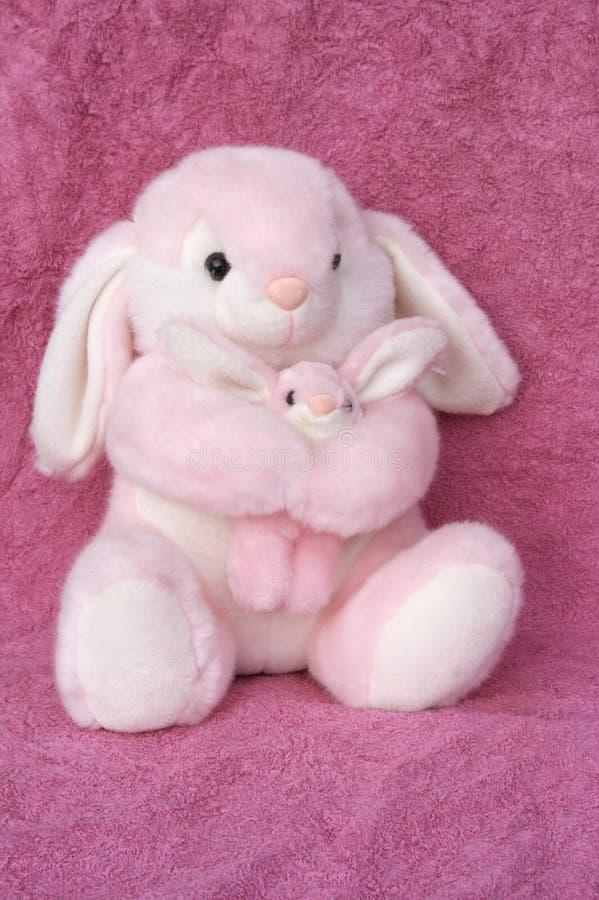 Momma e coniglietto fotografie stock libere da diritti