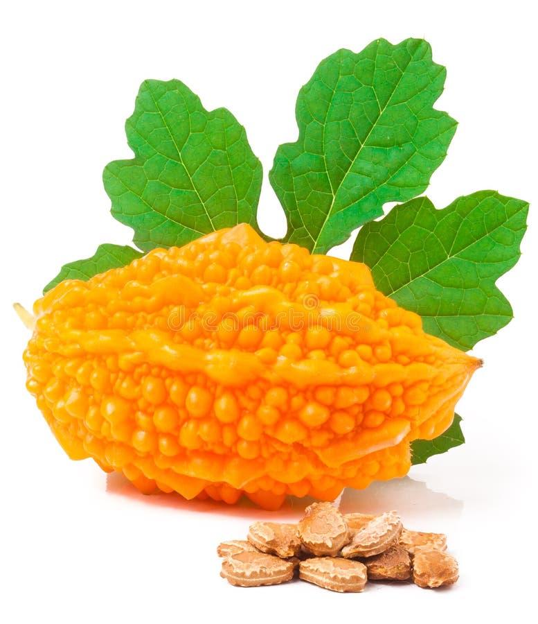 Momordica amarelo com a folha e as sementes isoladas no fundo branco fotografia de stock royalty free