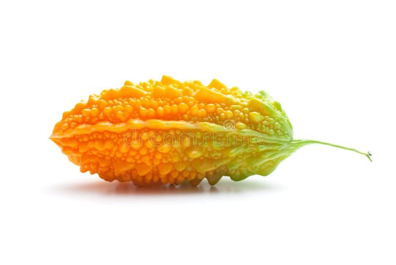 Momordica charantia lizenzfreies stockfoto