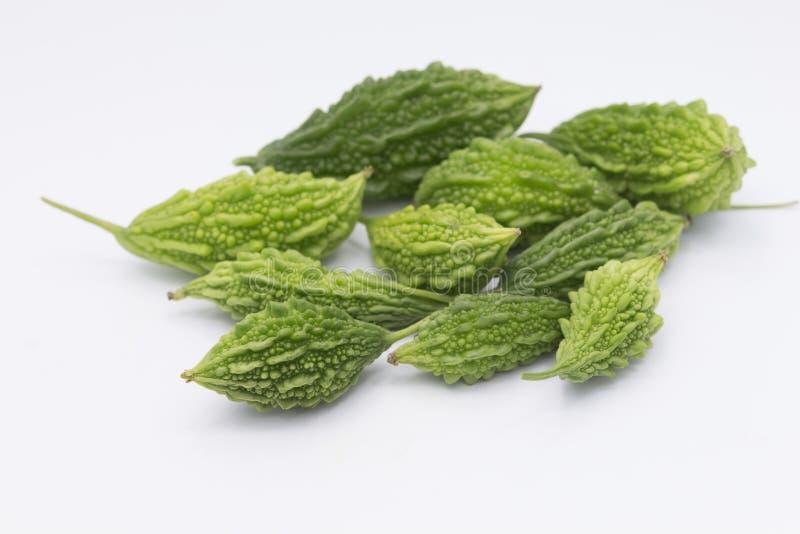 Momordica ou karela verde com o isolado da folha no branco fotos de stock royalty free