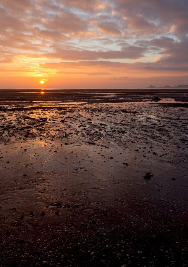 Mompelt zonsopgangverticaal stock fotografie