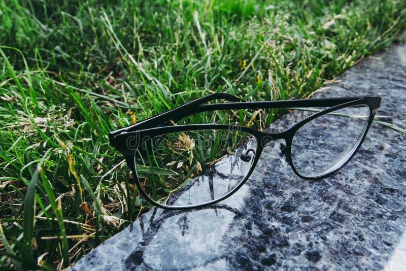 Monóculos na borda preta que liying na superfície do granito perto da grama fotos de stock