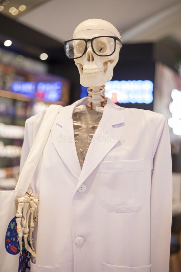 Monóculos vestindo da cabeça do esqueleto ou do crânio e l científico branco fotografia de stock