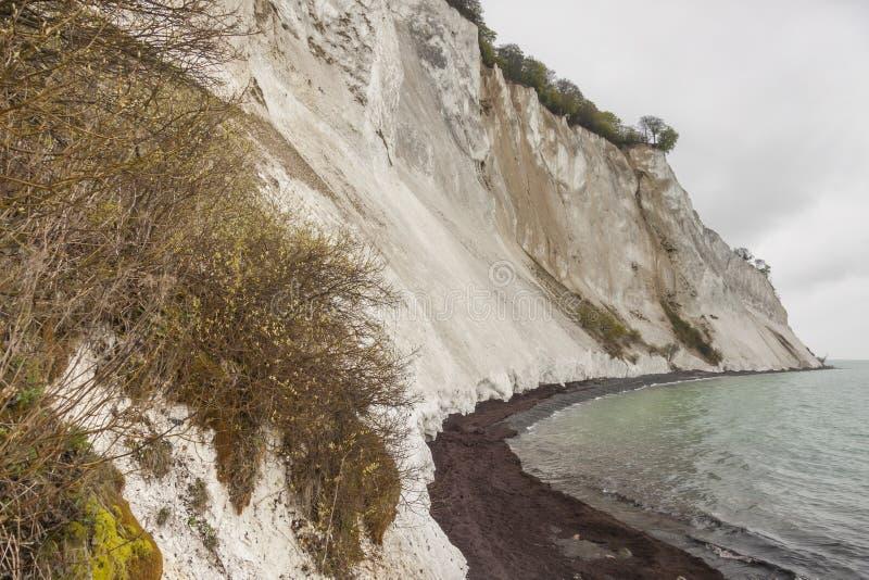Mon, Denemarken - witte klippen stock fotografie