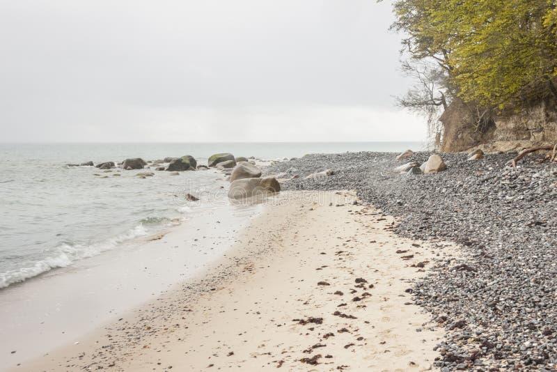 Mon, Denmark - white cliffs royalty free stock photo