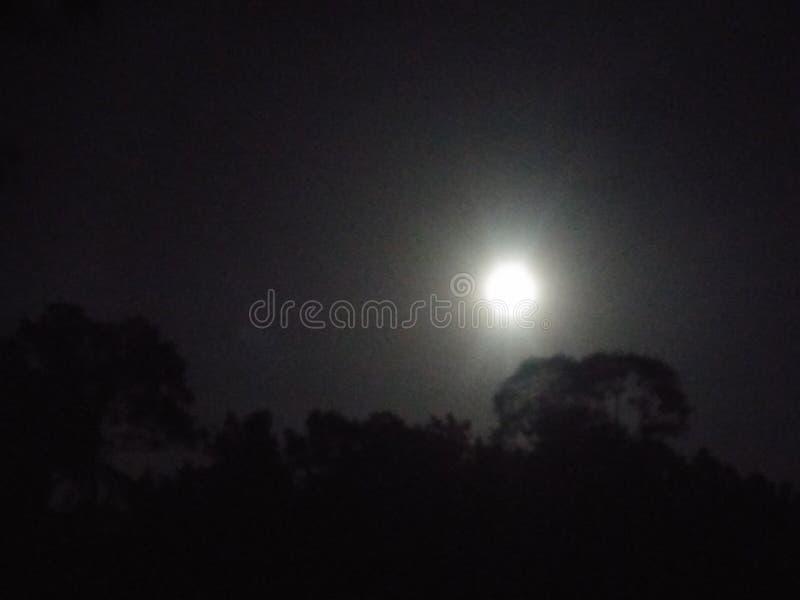 mon noc zdjęcie stock