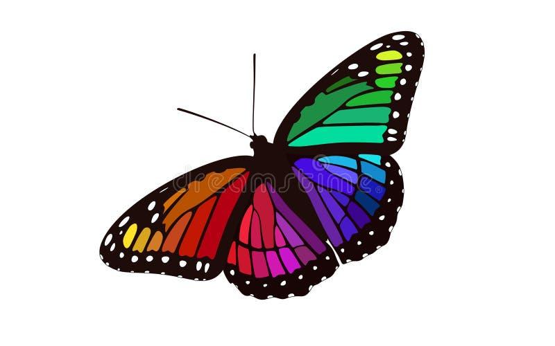 Monarca con alas coloreado arco iris - vector de la mariposa ilustración del vector