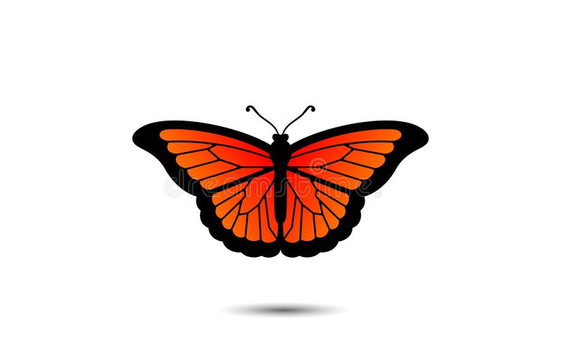 Monarch Butterfly Orange vector illustration