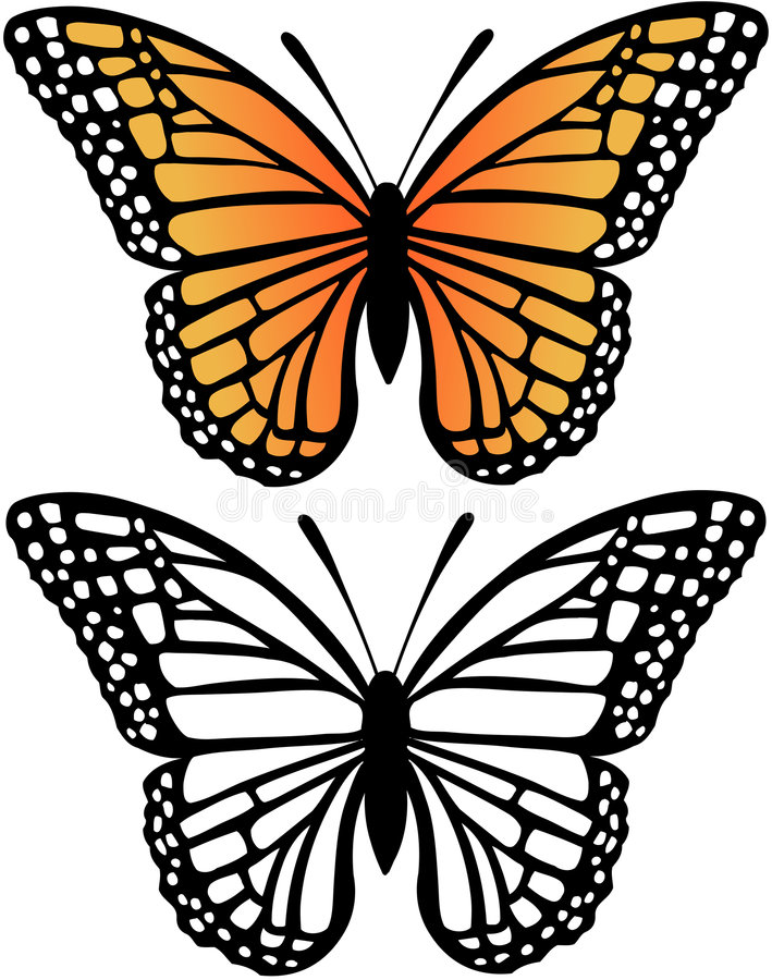 Download Monarch Butterfly Vector Illustration Stock Vector - Image: 5768944