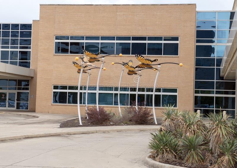 Monarchicznego motyla rzeźba David Hickman na zewnątrz Parkland Simmons ambita operacji centrum, Dallas, Teksas zdjęcie stock