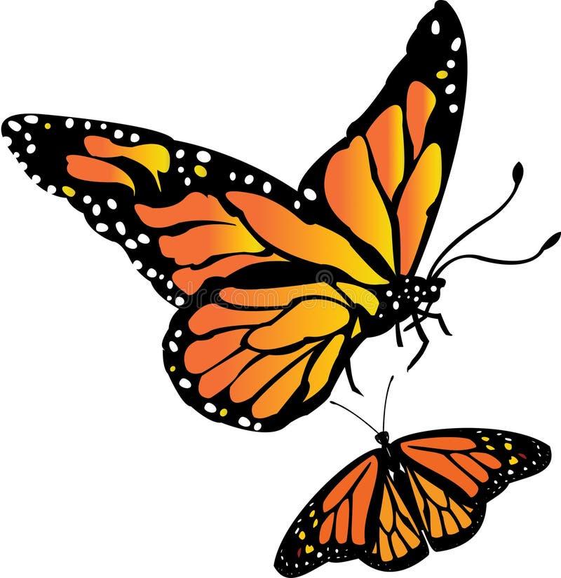 Monarkfjäril royaltyfri illustrationer
