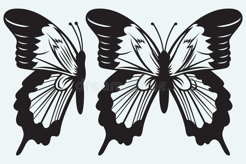 Monarkfjäril med öppna vingar royaltyfri illustrationer