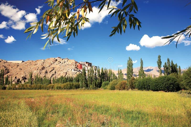 Monastério de Spituk, Leh-Ladakh, Índia fotografia de stock royalty free