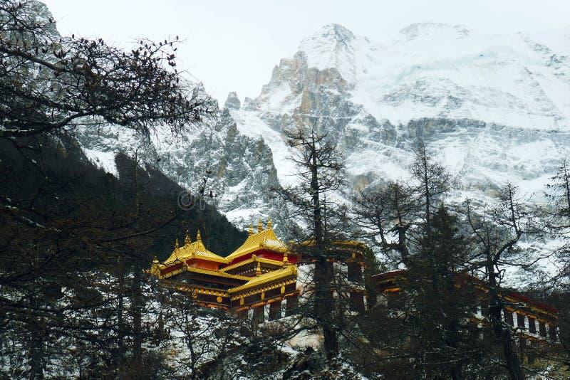Monast?rio de Chonggu no p? do Mt Chenrezig, reserva natural de Yading, Daocheng, China Um fim recolhido foto do inverno imagens de stock