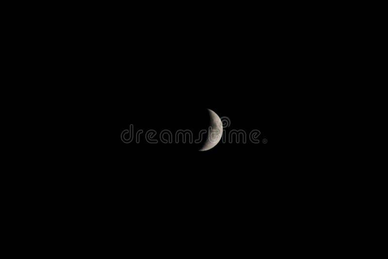 Mond lizenzfreie stockfotos